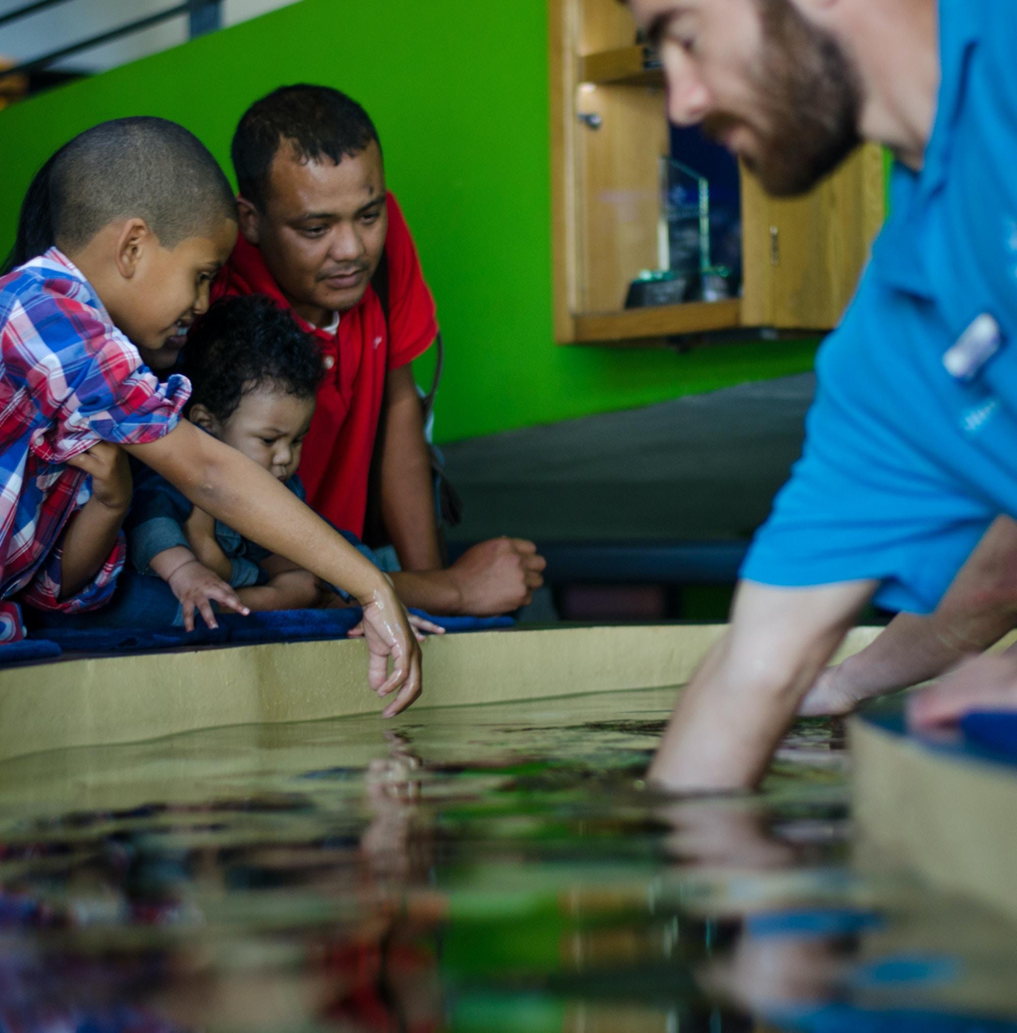 Top Attractions VA Waterfront Aquarium CTT Aquarium c Lisa Burnell 68
