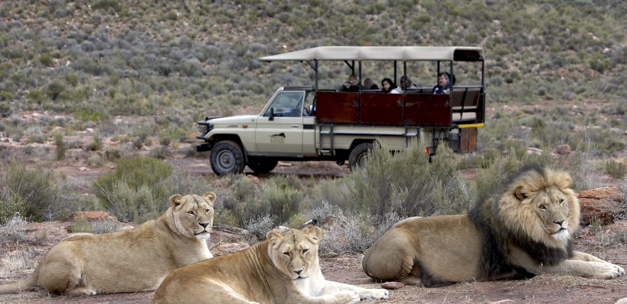 Aquila Game Drive 1