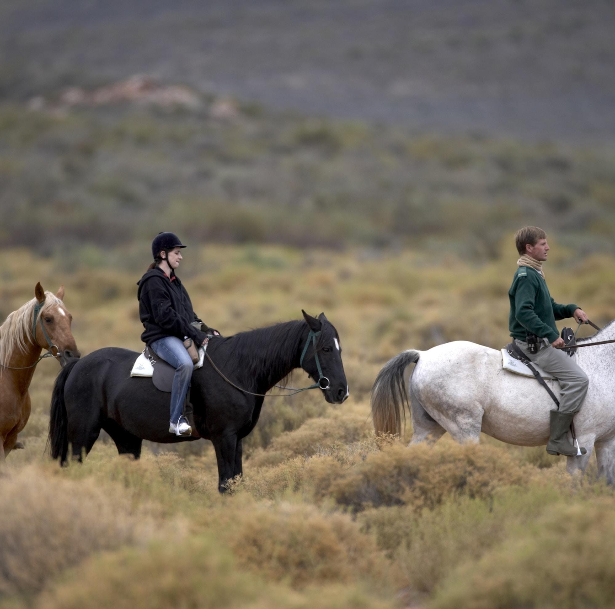Aquila Horseback Safari1