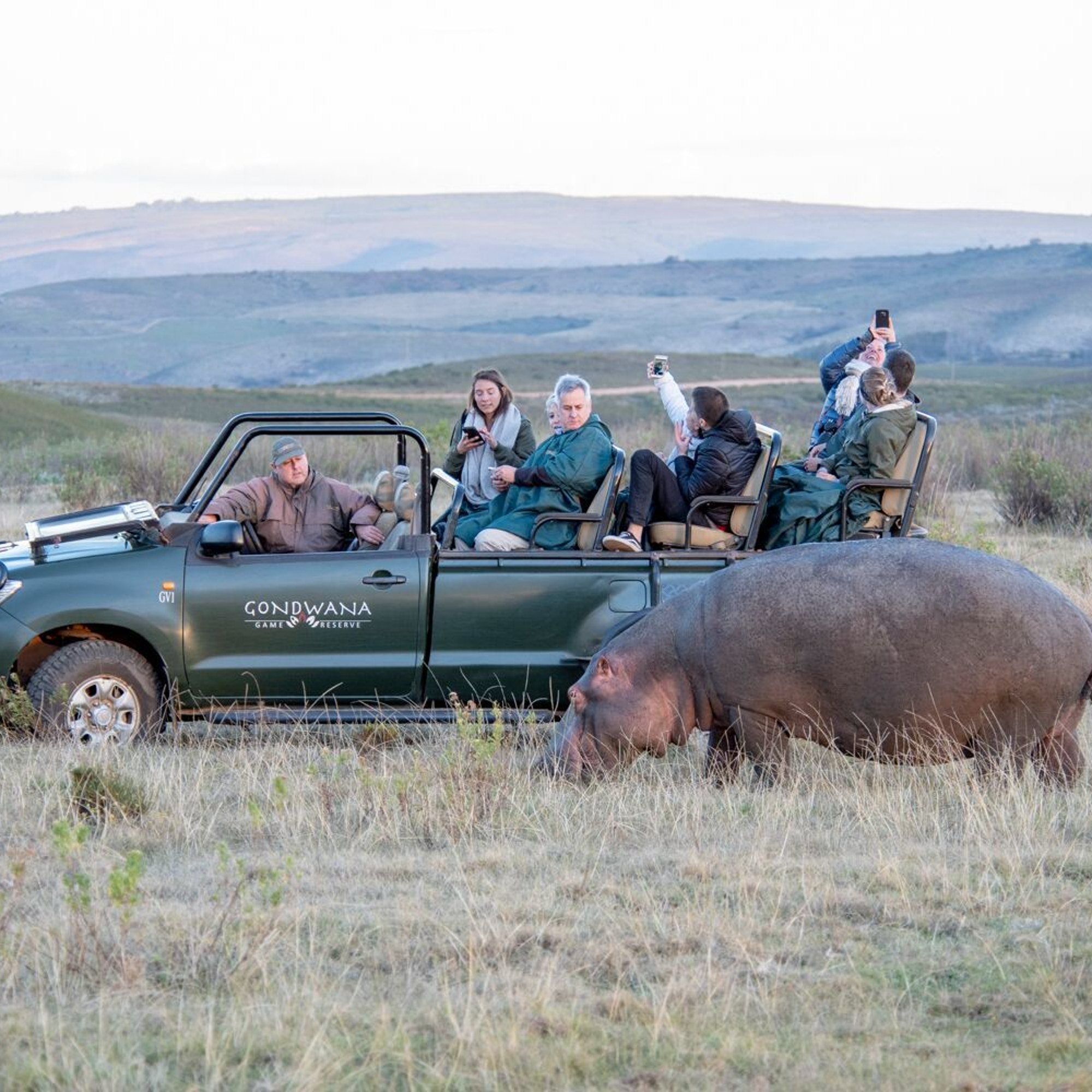 Gondwana Game Drive 7