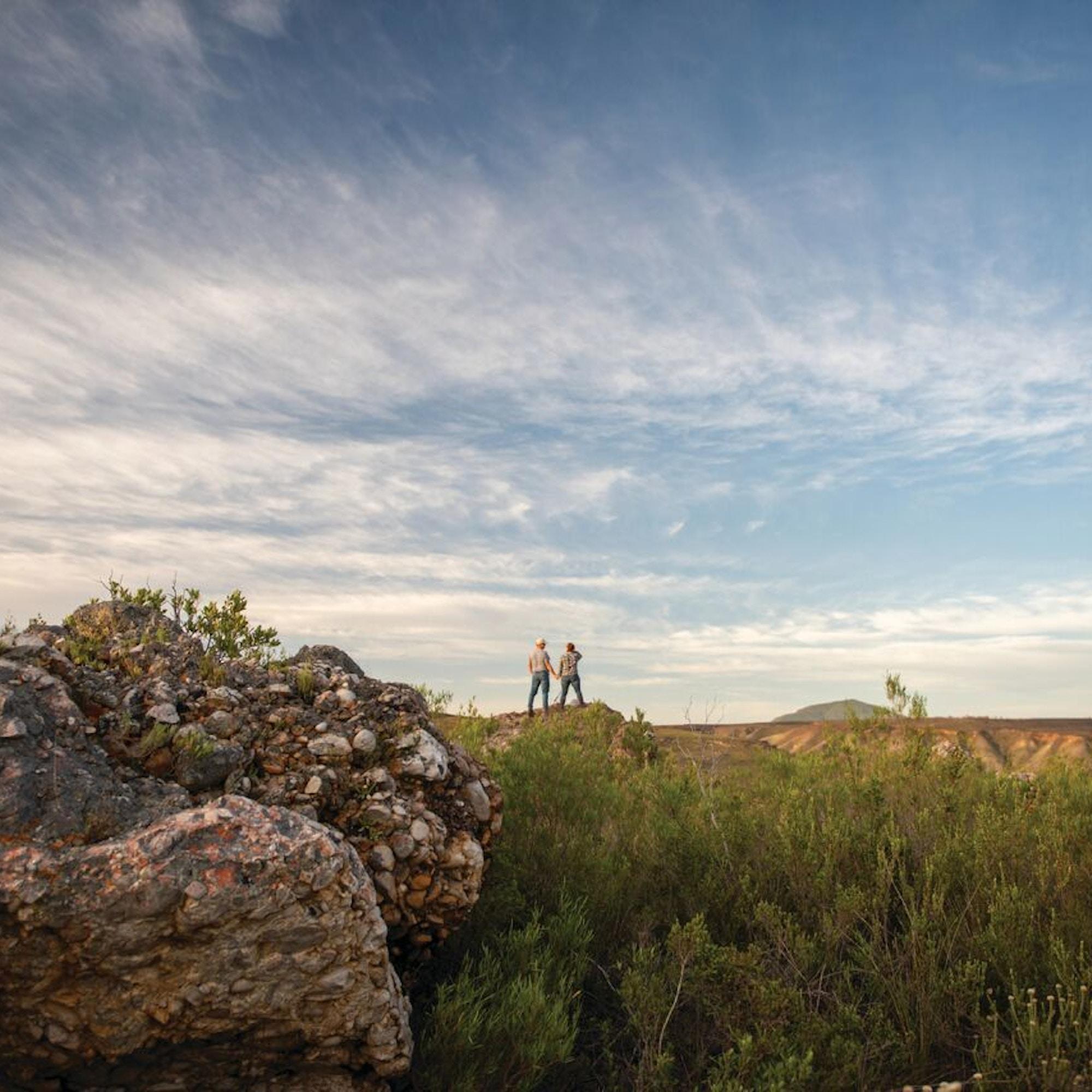 Gondwana Landscape 1