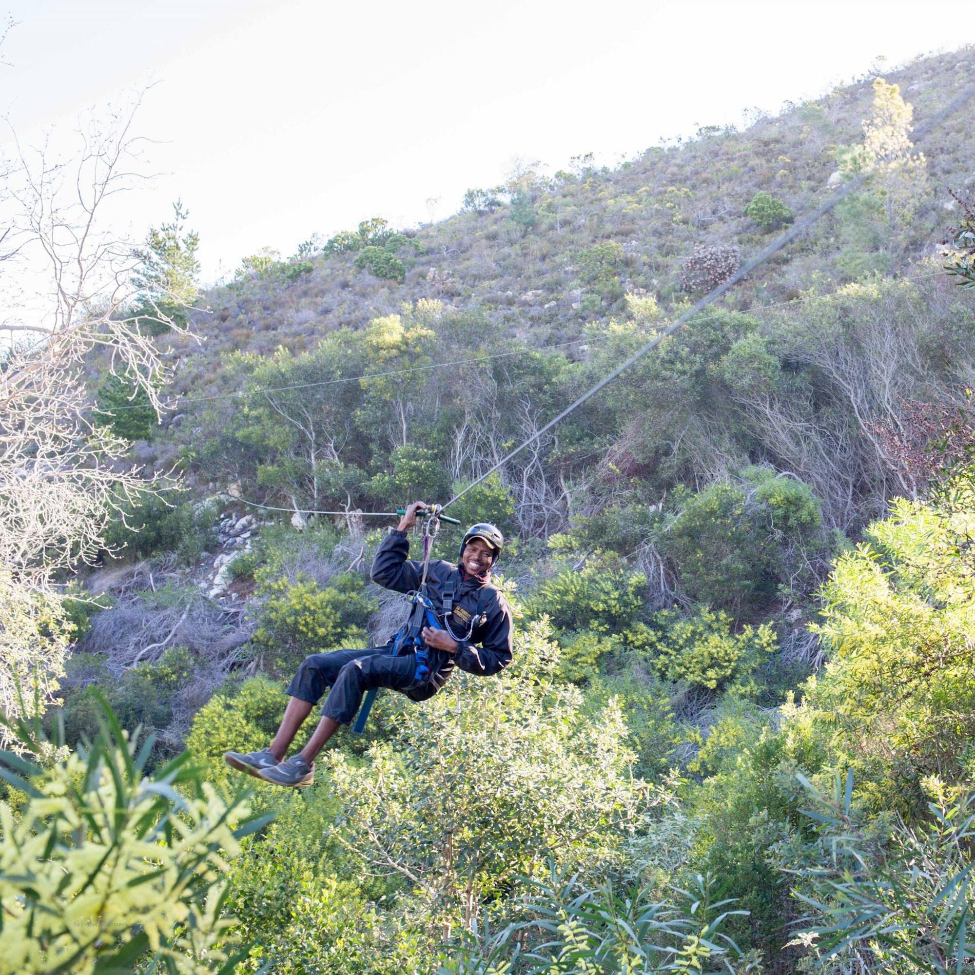 Hermanus Tree Top Zipline 1