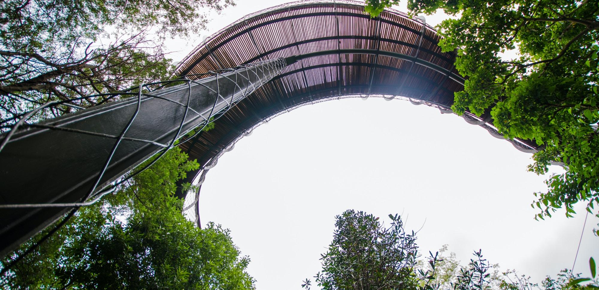Top Attractions Kirstenbosch CTT Kirstenbosch Gardens c Lisa Burnell 35 1