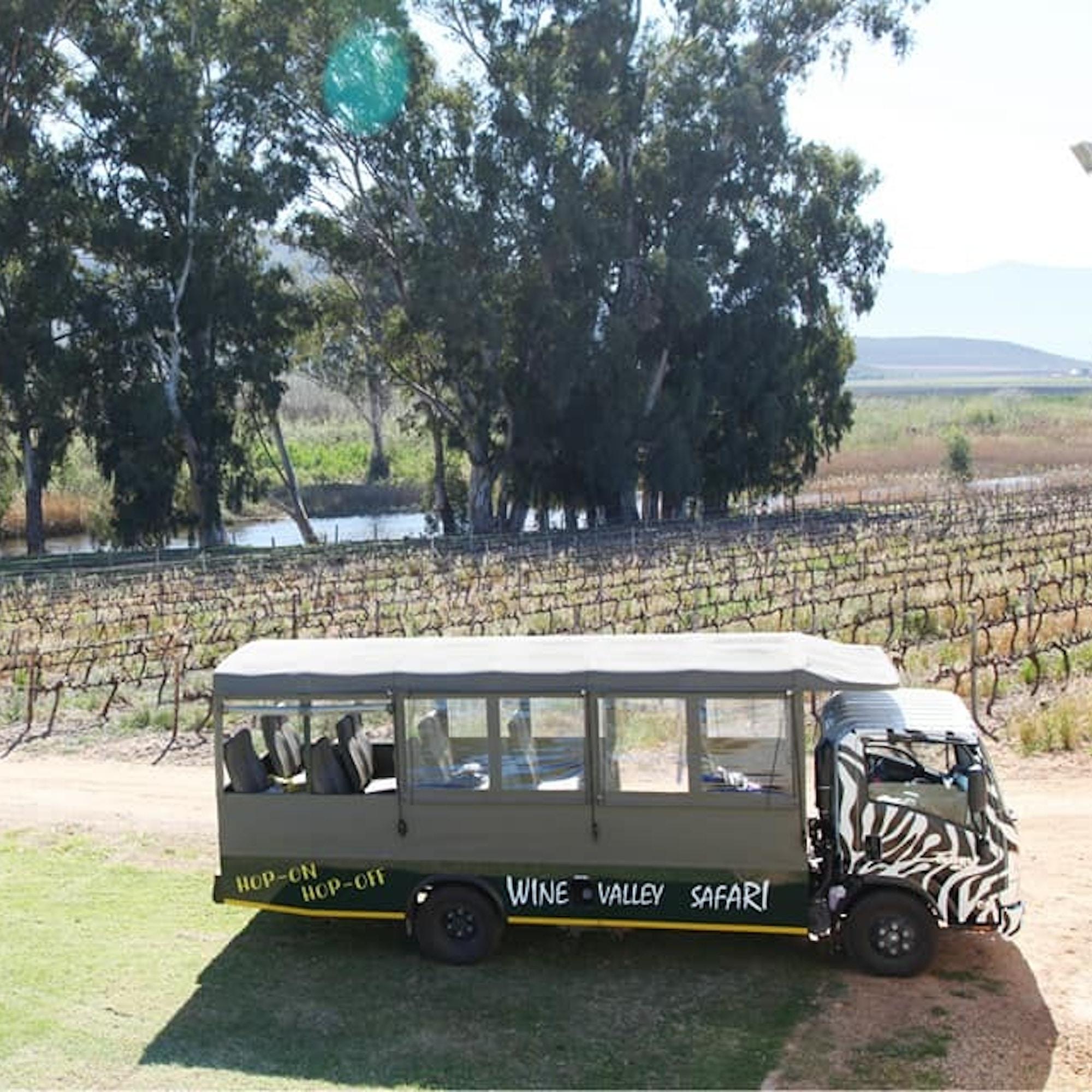 Wine Valley Safari